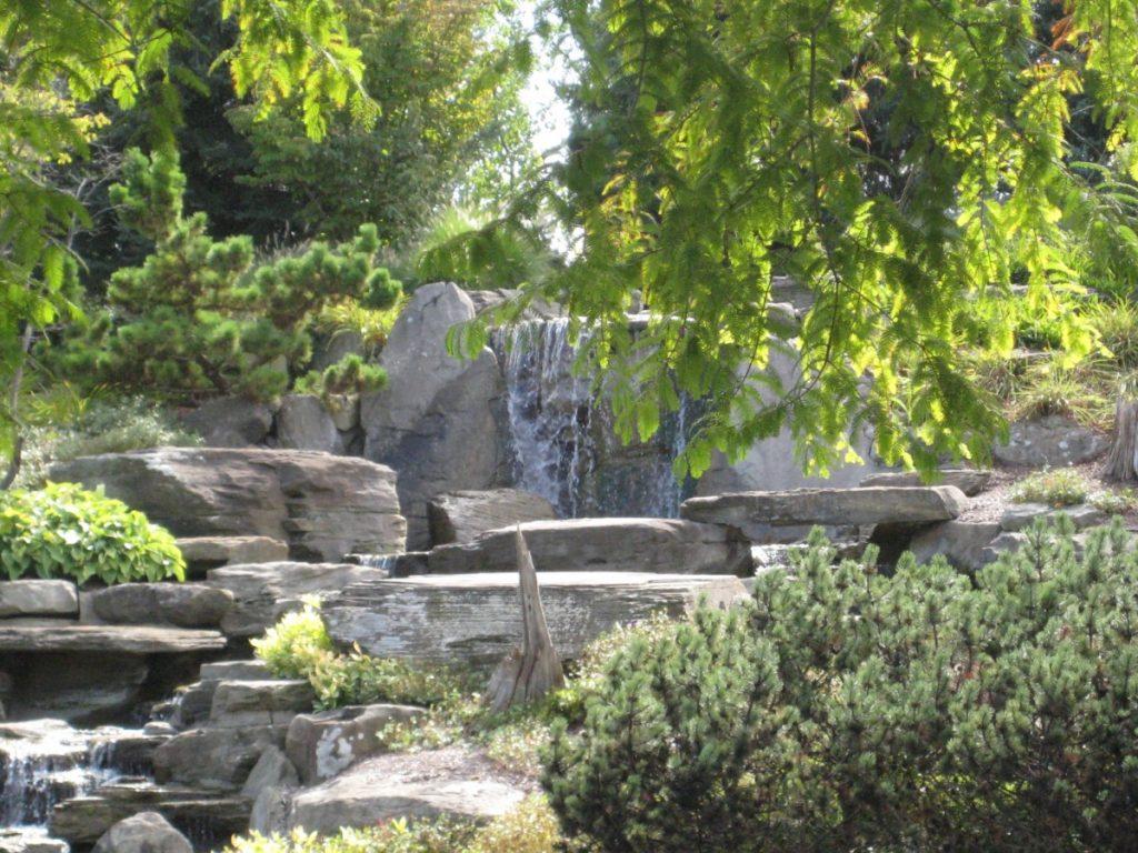 Meier Gardens 067